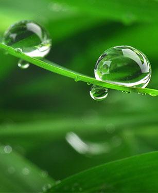 Zubehör Regenwasserentnahme