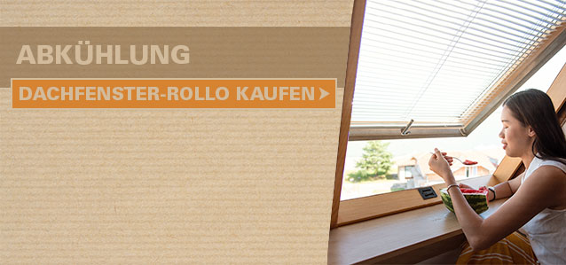 Dachfenster-Rollo