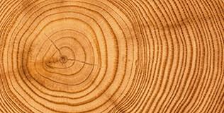 Holz Gartenhäuser